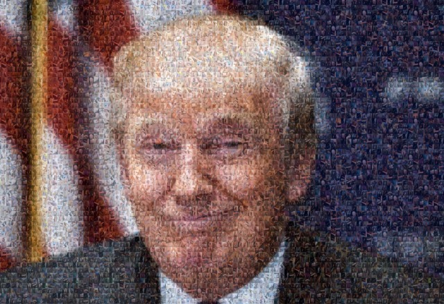 A Donald Trump Portrait Out Of 500 Dick Pics