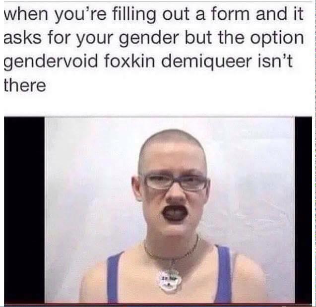 gendervoid-foxkin-demiqueer