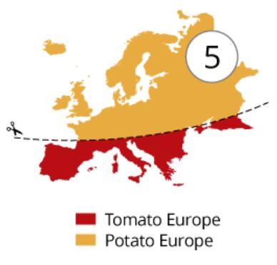 Tomato-Europe-vs-potato-europe
